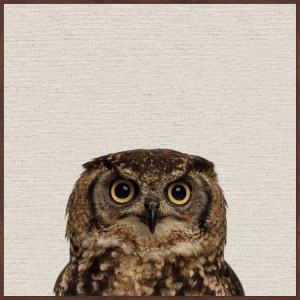 'Those Big Eyes II' Floater Framed Painting Print on Canvas - Multi-color