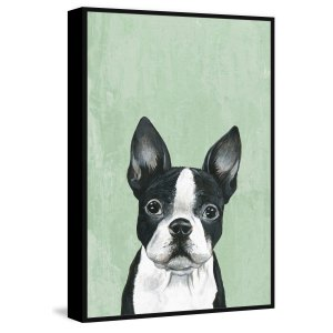 'The Curious One' Floater Framed Painting Print on Canvas - Multi-color