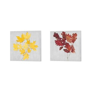 Dianne Miller 'Autumn Leaves B' Canvas Art (Set of 2)