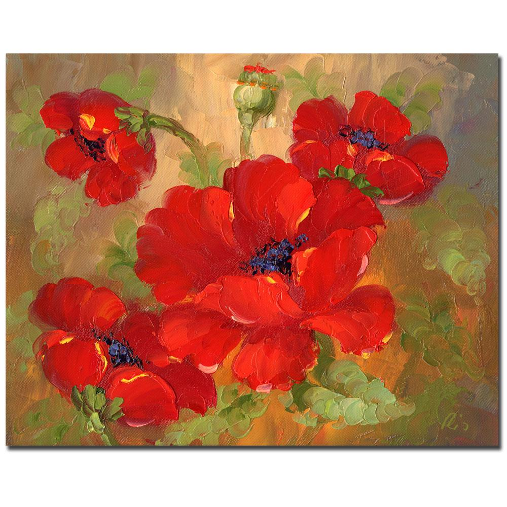 poppies gallery wrapped canvas
