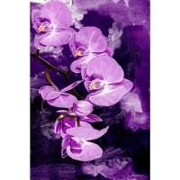 Shop Maxwell Dickson 'Purple Orchid' Canvas Wall Art ...