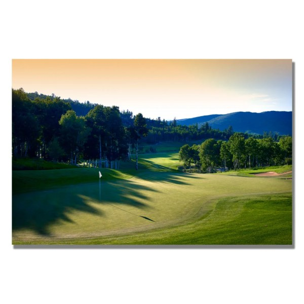 'golf 4' Canvas Art - 14302814 Shopping Trademark Fine