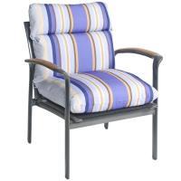 Bria Stripe Outdoor Brown/ Purple Club Chair Cushion ...