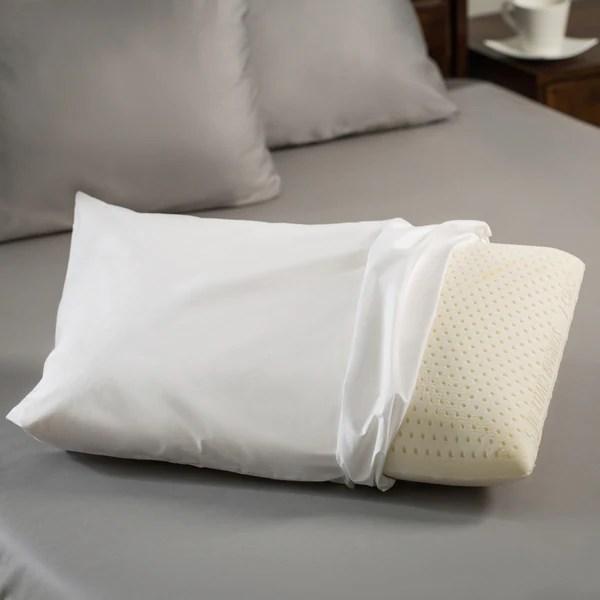 Premium Natural Latex Foam Pillow  921685  Overstockcom