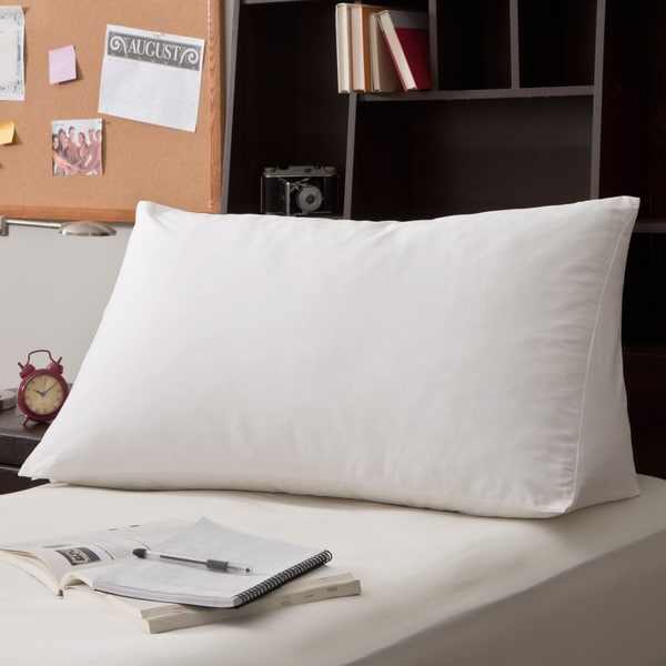 Shop White Goose Down and Feather Reading Wedge Pillow