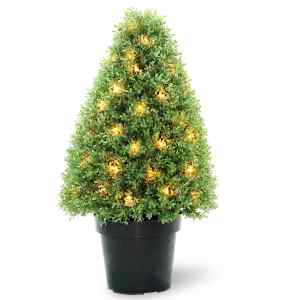 30-inch Boxwood Tree with Dark Green Growers Pot with 50 Clear Lights