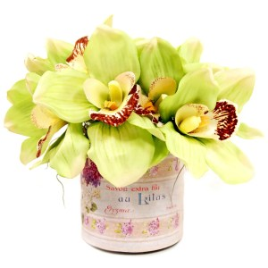 Cymbidium Orchid Silk Flowers in French Labelled Glass Container - burgundy