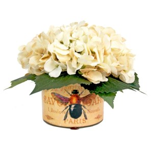 White Hydrangea Silk Flowers in French Bee Labeled Glass Vase - CREAM