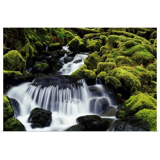 waterfall over mossy rocks olympic national park washington united states poster print
