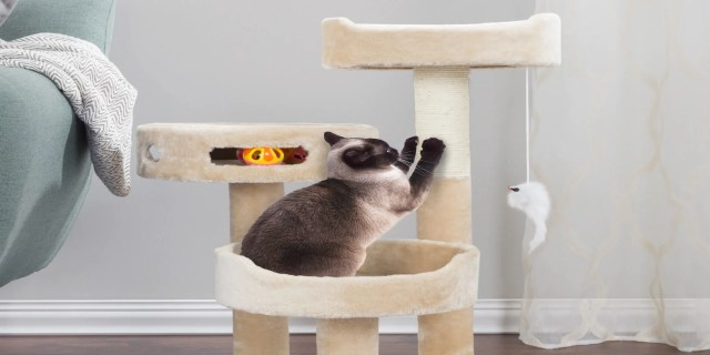 cat furniture | find great cat supplies deals shopping at overstock
