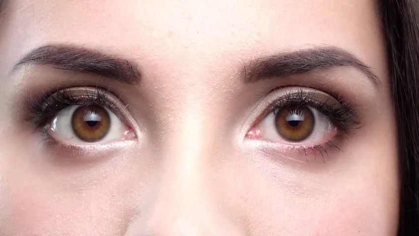 two female brown eyes