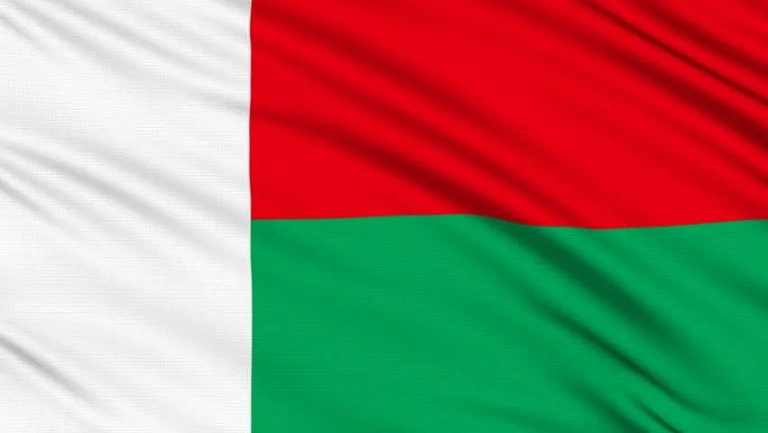 Madagascar Flag With Real Structure Stock Footage Video