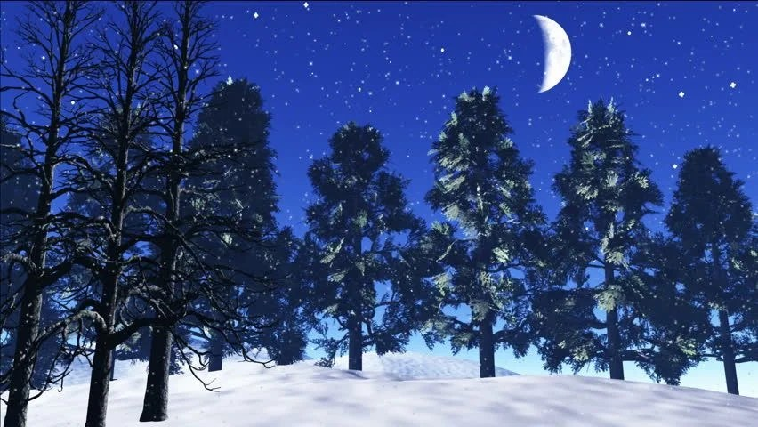 Free Animated Snow Fall Wallpaper Snowfall In The Pine Wood At Night Realistic Three