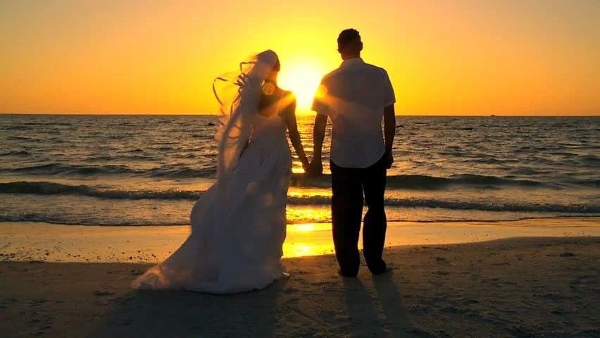 Cute Couple Hug Hd Wallpaper Download Back Side Of Young Couple Kissing On Beach At Sunset Stock