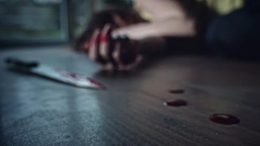 Image result for dead body and bloody knife