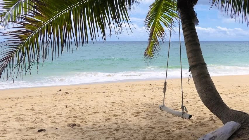 swing chair lagos portable tattoo beach scene in nigeria stock footage video 100 royalty free a wooden seat hanging on coconut tree by the sea with nice clean and