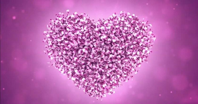 Rotating Flying Pink Rose Sakura Flower Petals Lovely Heart Backdrop For St Valentine S Day