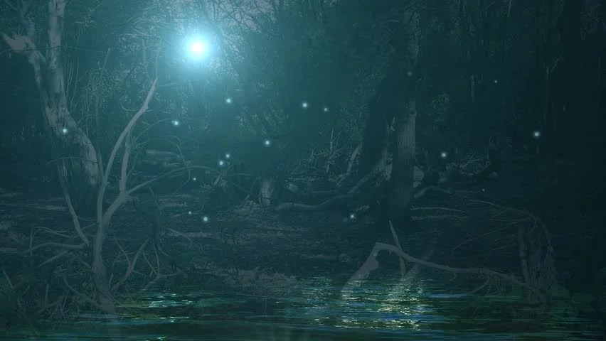 Magical Fantasy Enchanted Fairy Tale Forest Background