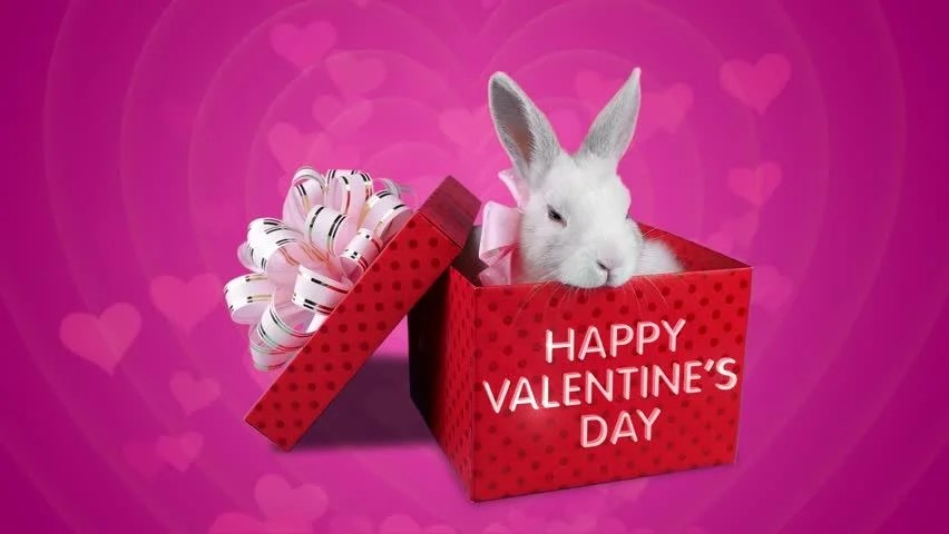 Happy Valentines Day Surprise Falling Present Box With