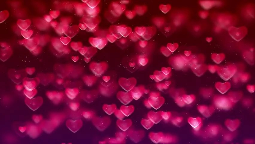 Shutterstock Hd Wallpapers Animated Hd Motion Background Video Loop Pink And Purple