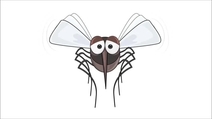 Mosquito Animation Stock Footage Video (100% Royalty-free