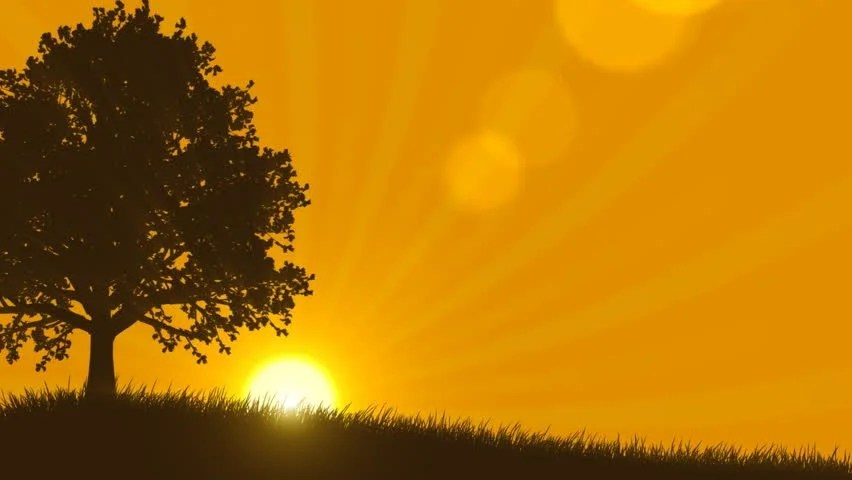 4 Seasons Summer with Sunrise Stock Footage Video 100 Royaltyfree 717397  Shutterstock