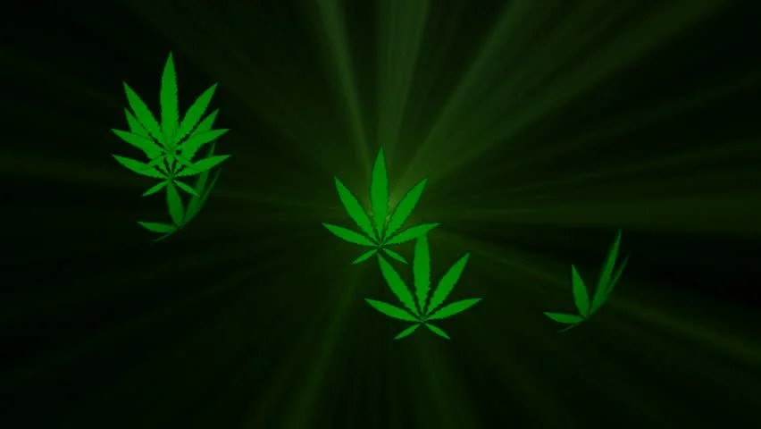 Falling Money 3d Wallpaper Official Crypto Currency Of Legalize Marijuana Movement
