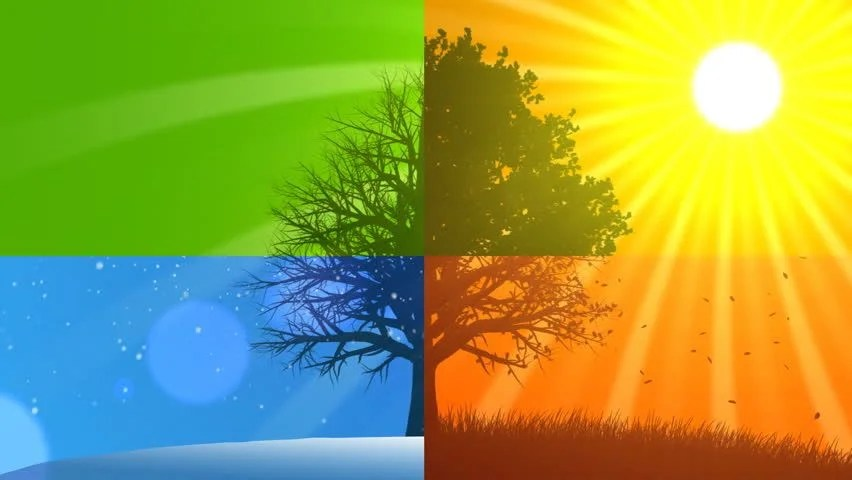 Fall Collage Wallpaper 4 Seasons Composition Animated Background Stock Footage