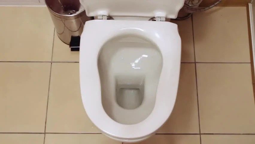 WC In White Toilet Is Installed A Man Pushes A Button And