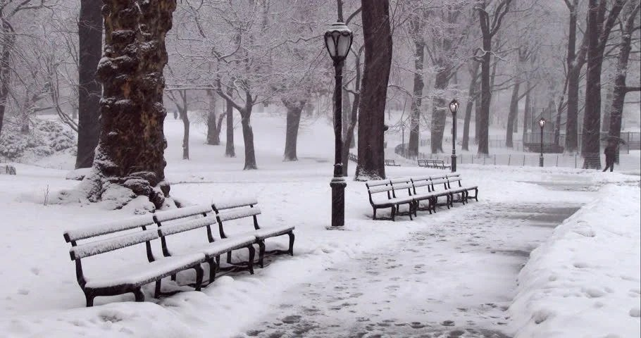 Wallpaper Hd Snow Falling Snow Falling On Benches That Stock Footage Video 100