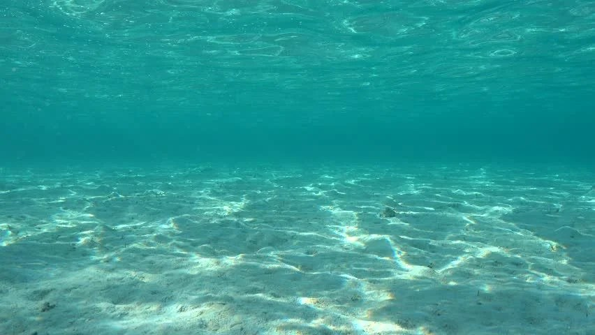 Water Wallpaper Hd Live Stock Video Of Underwater On A Shallow Sandy Seabed