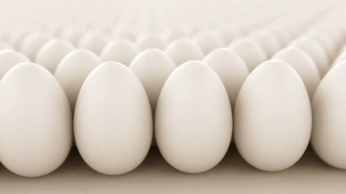 Image result for Eggs hd