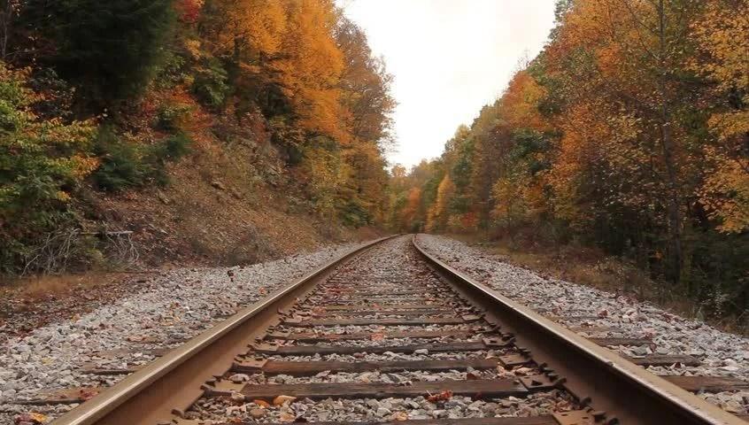 Free Fall Foliage Wallpaper Train Trestle Bridge And Beautiful Fall Leaves Stock