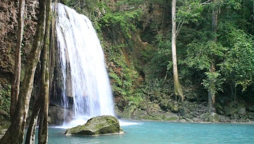 Animated Jungle Wallpaper Tranquil And Serene Scene Of Waterfall Falling In Wild
