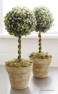 DIY Topiary Trees from Dollar Store Supplies