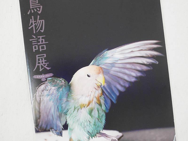 寫真展【鳥物語 トリストーリー展】に行ってきた | 赤ヘルインコ