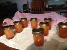 Many little jars of sweetness