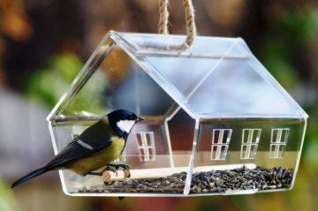 Hoe een feeder met vogels in een gefaseerd potlood, verven te tekenen?