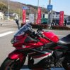 sakizoはGSX250Rを手に入れた!