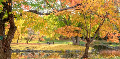 札幌「中島公園」處處都是如癡如醉的夢幻絕景!