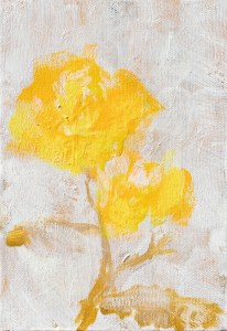 Yellow Rose c -Yellow Rose c-