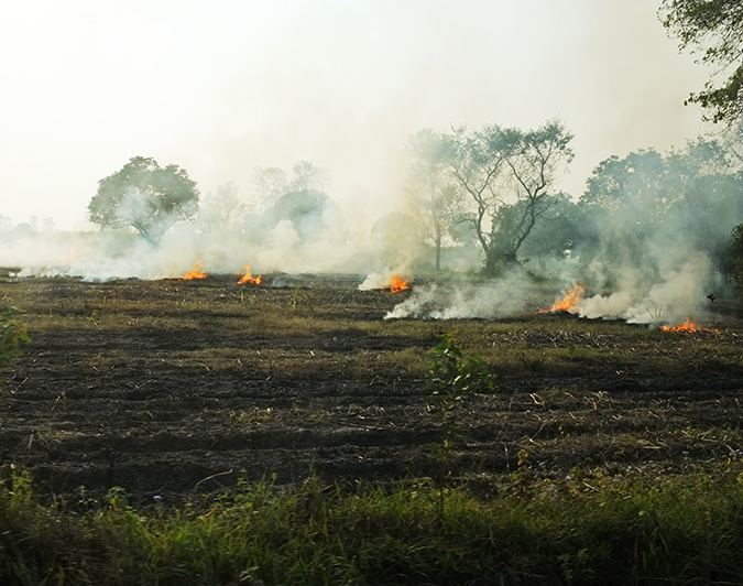 Akanksha Redhu | Travel India | fire