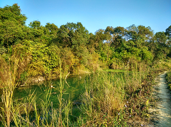 Akanksha Redhu | Travel India | croc water phone wide