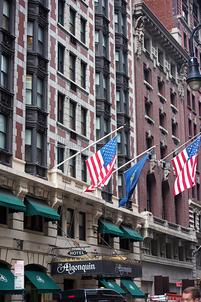 New York | Akanksha Redhu | #RedhuxNYC | flags