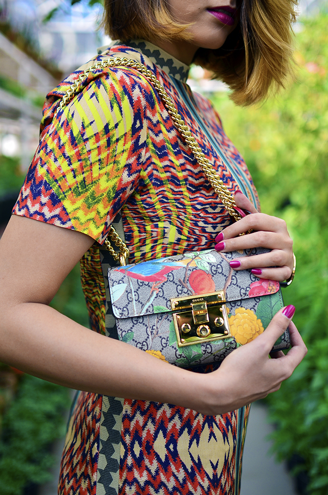 The Greenhouse | Gucci | Akanksha Redhu | side lips bag