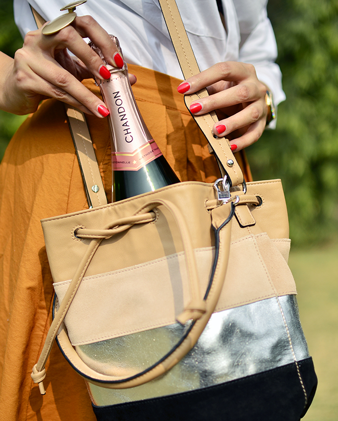 Valentine's Day Ready | Chandon India | Akanksha Redhu | bottle in bag
