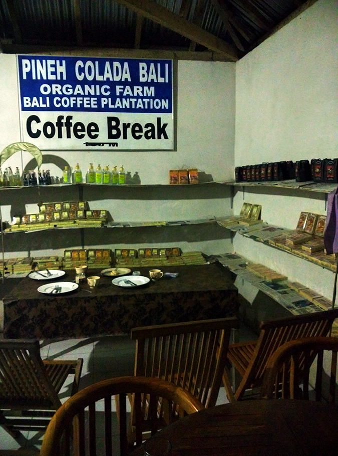 Mount Batur Sunrise Trek | Bali | Akanksha Redhu | pancake time