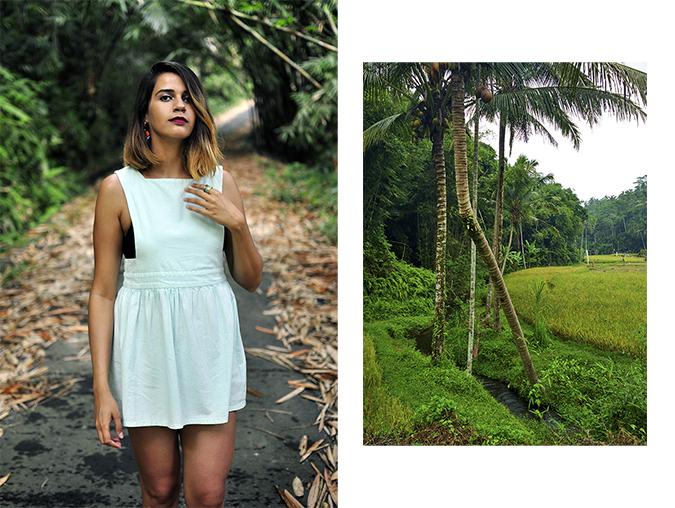 Tegalalang Rice Terraces - Ubud | Bali | Akanksha Redhu | combo 2 road