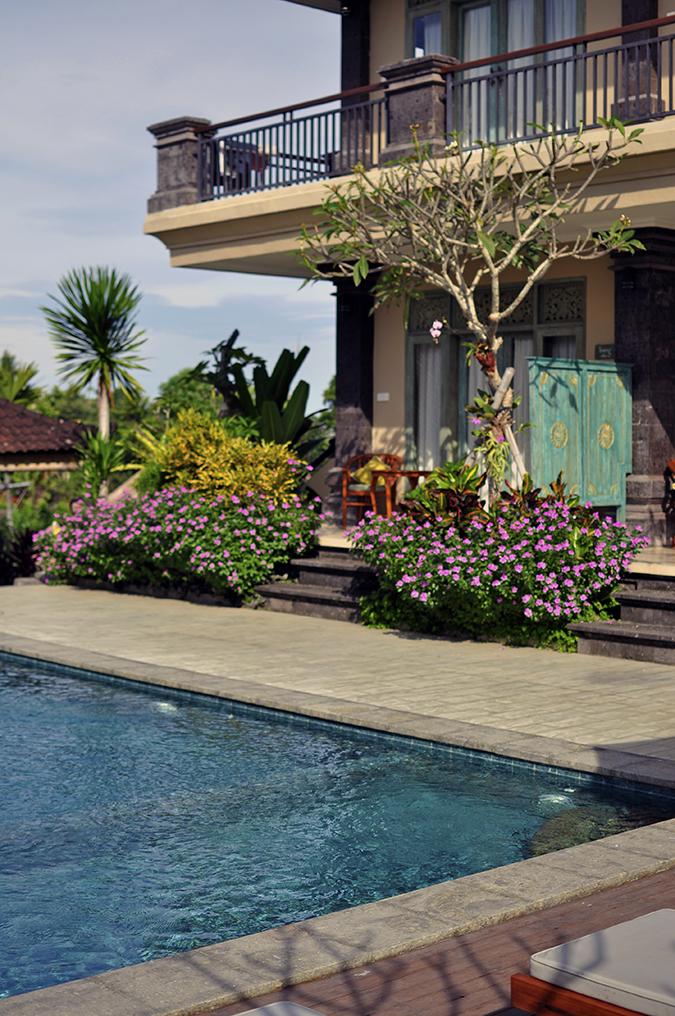 Ubud | Akanksha Redhu | pool and rooms