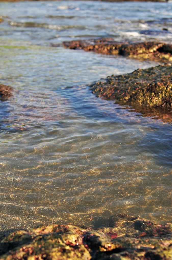 Kedungu Beach | Bali | Akanksha Redhu | spakling water
